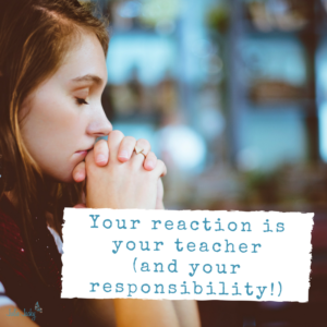 Your Reaction Is Your Teacher (& Your Responsibility)